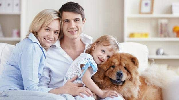 Wills & Trusts dog-young-family Direct Wills East Sussex